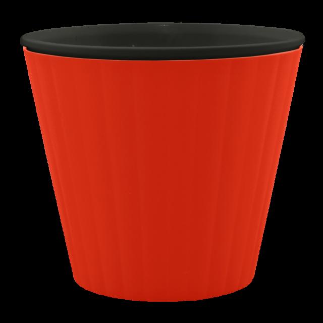 Саксия ИБИС  с двойно дъно  13,0х11,2 см