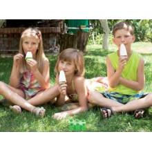 Форми за сладолед с поставка