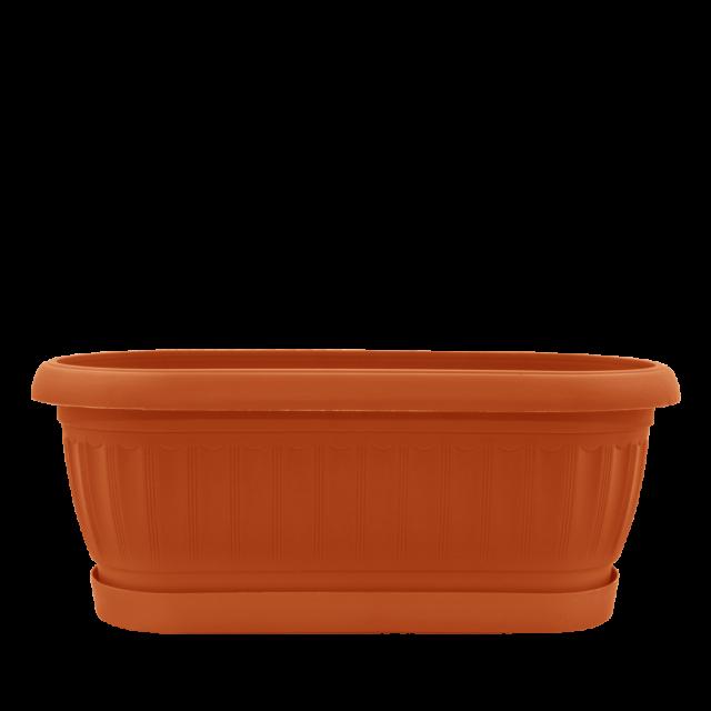 Сандъче ТЕРА с подложка за кактуси - два размера